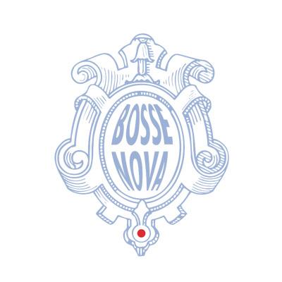 Stichting Bosse Nova